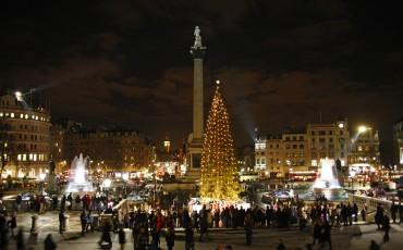 Trafalgar Square Christmas Tree