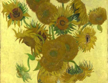 National Gallery - Sunflower by Vincent Van Gogh. Photo Credit: ©National Gallery, London.