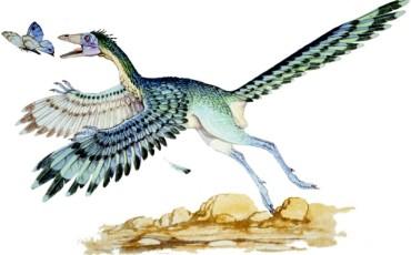 Natural History Museum - Dino Skin