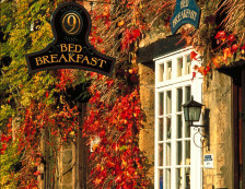 Autumnal colours on display on a bed and breakfast in Stow-on-the-Wold in the Cotswolds.