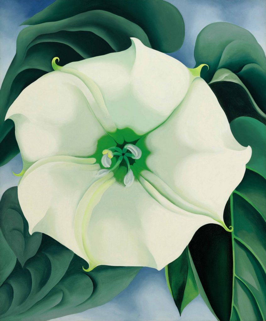 Georgia O'Keeffe 1887-1986, Jimson Weed/White Flower No. 1 1932. Photo Credit: ©2016 Georgia O'Keeffe Museum/DACS, London.