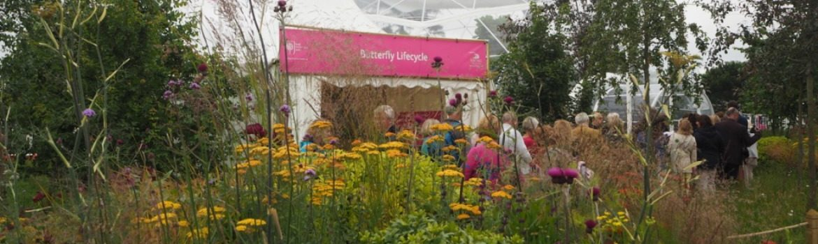 2016 RHS Hampton Court Palace Flower Show: Butterfly Dome Entrance. Photo Credit: ©Ursula Petula Barzey.
