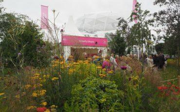 2016 RHS Hampton Court Palace Flower Show: Butterfly Dome Entrance. Photo Credit: ©Ursula Petula Barzey.