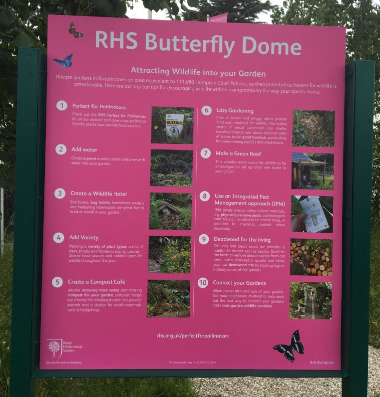 2016 RHS Hampton Court Palace Flower Show: Butterfly Dome - Guidance on attracting butterflies and other wildlife in garden. Photo Credit: ©Ursula Petula Barzey.