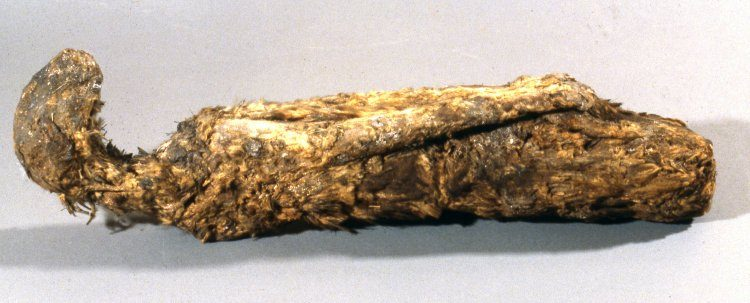 British Museum: Mummy of a cat, all wrappings removed, legs drawn in close to the body, much of the fur survives. Photo Credit: © British Museum.