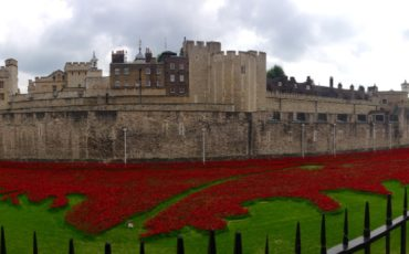 Tower of London: Blood Swept Lands and Seas of Red Poppies. Photo Credit: © Ursula Petula Barzey.