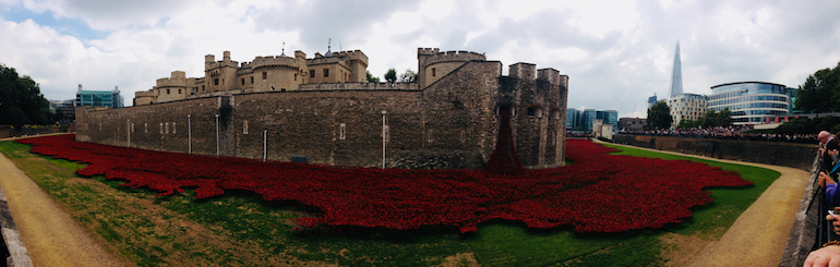 Ceramic red poppies in moat at Tower of London: Blood Swept Lands and Seas of Red. Photo Credit: © Ursula Petula Barzey.