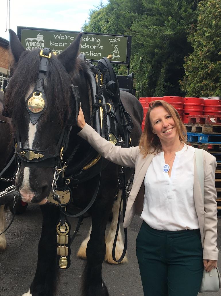 Major the dray horse and Ildi Pelikan. Photo Credit: © Ildi Pelikan.